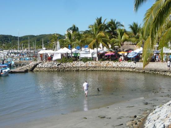 La Cruz de Huanacaxtle