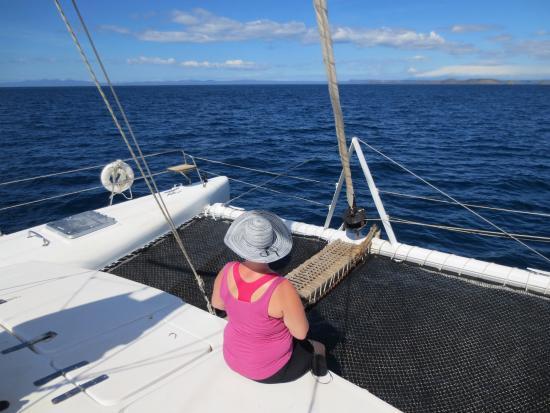 Sailing Hibiscus Catamaran Sail Tours: Enjoying the views from the Catamaran