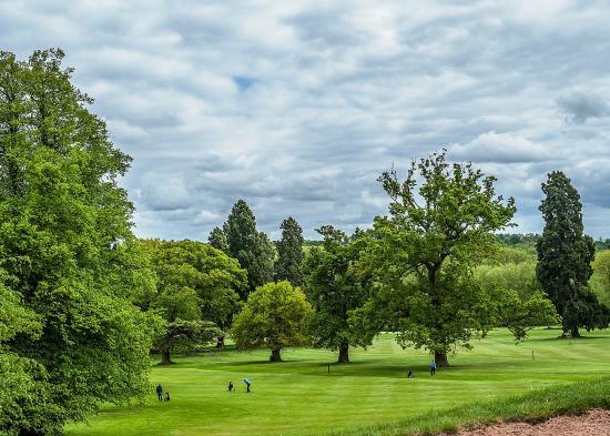 Pattingham, UK: Golf