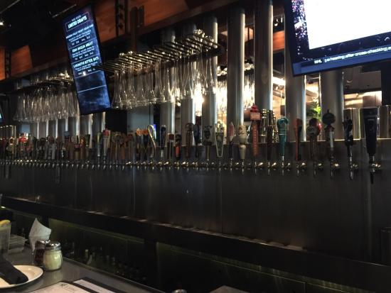 Yard House: photo0.jpg