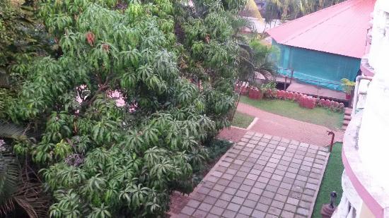 The Country Club De Goa Resort: TA_IMG_20160129_071613_large.jpg