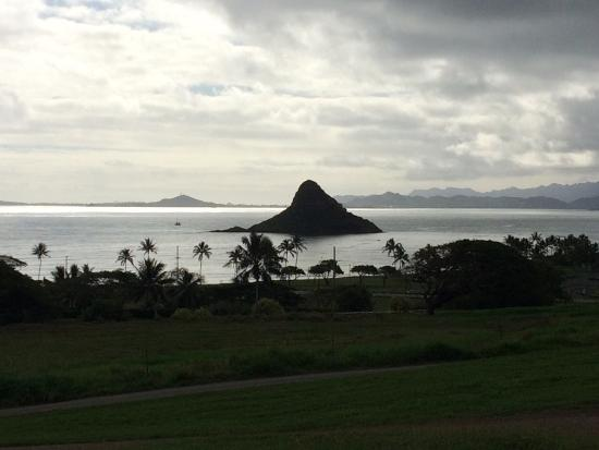 Kaneohe, Hawái: photo6.jpg