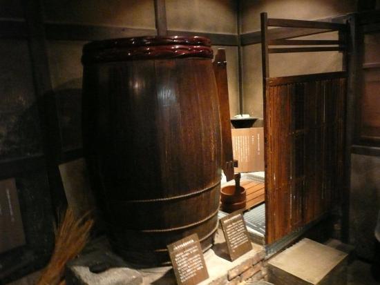 Lake Biwa Museum: 展示物
