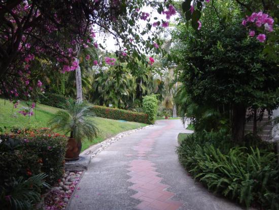 Camino Real Zaashila Photo