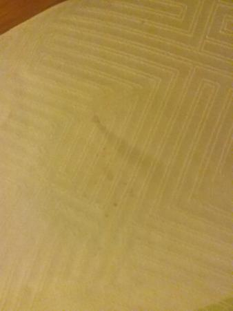 Willoughby, OH: Stain on bed cover