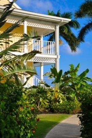 Sunshine Suites Resort: Garden Shot