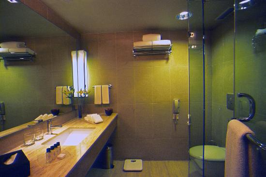 Svelte Hotel and Personal Suites: Wash Room