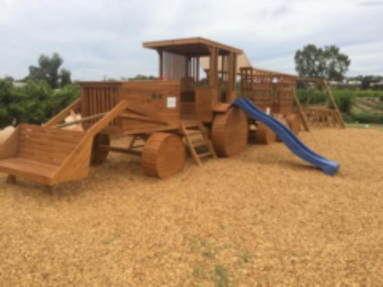 Glossop, Avustralya: The playground at Bella Lavender Estate is free to use