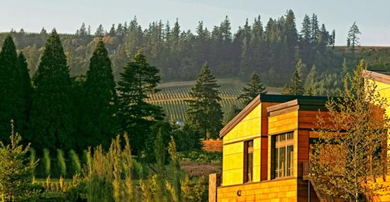 Newberg, OR: Allison Inn and View Points