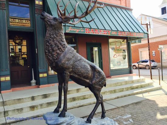 Ridgway, Pensilvania: photo3.jpg