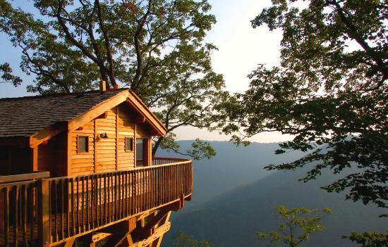 Meadows of Dan, VA: Tree House