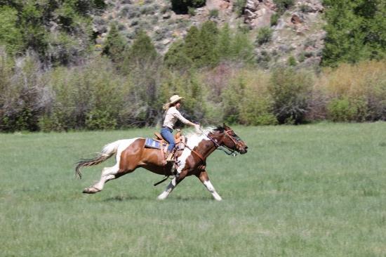 Saratoga, WY: Horseback Riding