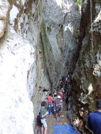 Foto de Adam's Rock climbing school