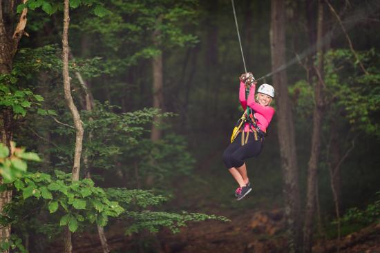 Middleburg, فيرجينيا: Ziplining