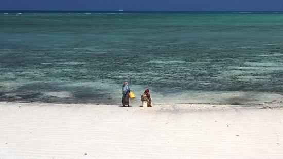 DoubleTree by Hilton Resort Zanzibar - Nungwi照片