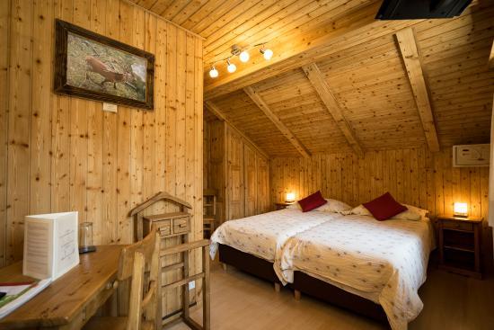 Hotel de Moiry : Chmabre rustique