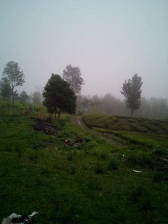 Gambar Jawa Barat