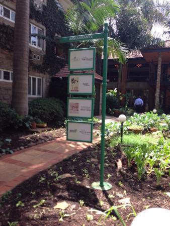 Mukutan garden cafe nairobi restaurant avis num ro de for Pool garden restaurant nairobi