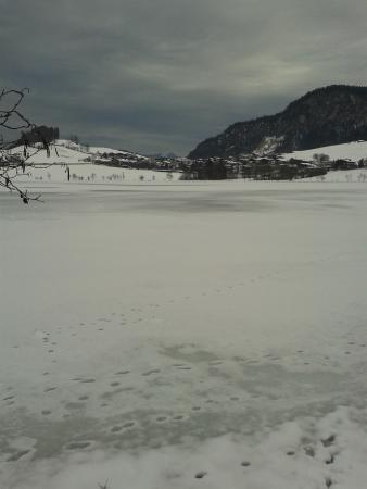Thiersee Photo