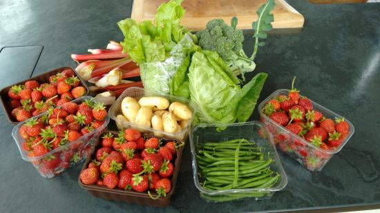 Moniaive, UK: Produce from the Garden