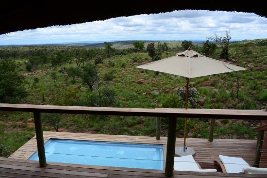 Welgevonden Game Reserve, Sudáfrica: Honeymoon Suite - Pool