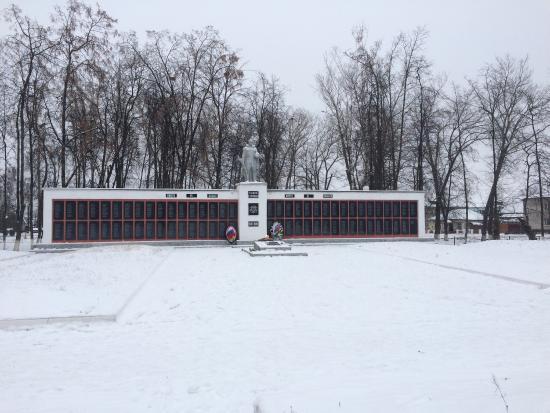 Dmitriyev, Rusia: Зима 2016. К 70-летию Победы монумент полностью отреставрировали