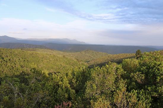Foto de Plettenberg Bay Game Reserve