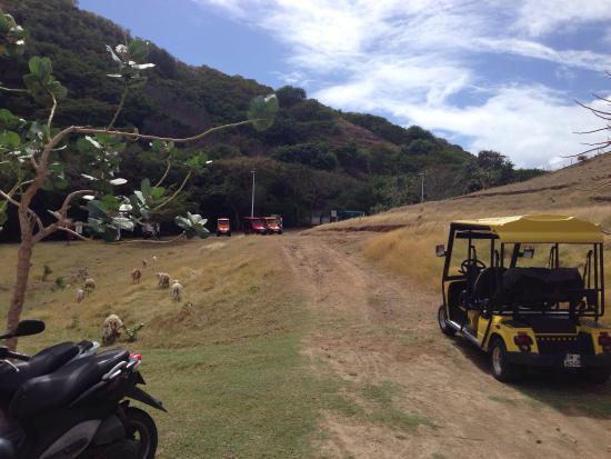 Iles des Saintes, Guadalupe: photo2.jpg
