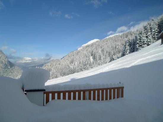 Bergblick Gasthof Photo