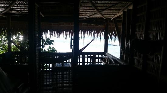 Kookoo's Nest-billede