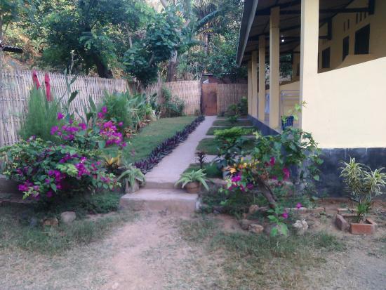 Västra Nusa Tenggara, Indonesien: our garden