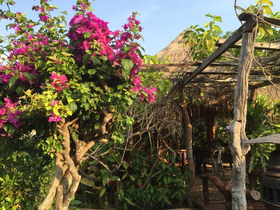 Sam Roi Yot, Thailand: Une petite rotonde très fleurie, aménagée, wifi compris