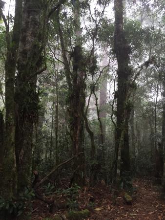 Gracias, Honduras: photo4.jpg