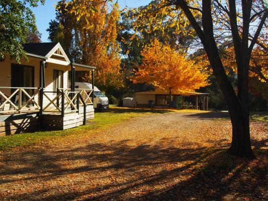 Porepunkah, Австралия: family cabin