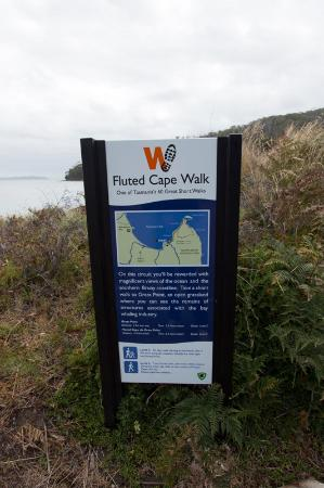 Adventure Bay, Australien: Fluted Cape Walk