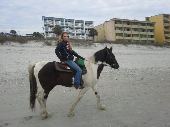 Horseback Riding Of Myrtle Beach