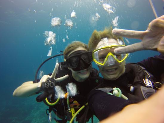 Foto de Heart & Soul Divers