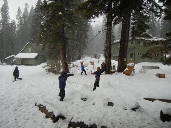 Montecito Sequoia Lodge Foto