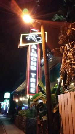 Almond Tree Restaurant: 20160129_191750_large.jpg