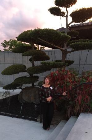 Foto de Morikami Museum & Japanese Gardens