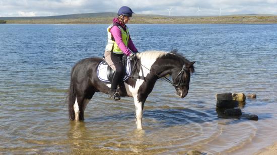 Todmorden, UK: Blue Boy paddling  at beach on Gaddings dam with  Angela Butler