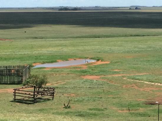 Middleburg, Sudáfrica: photo1.jpg