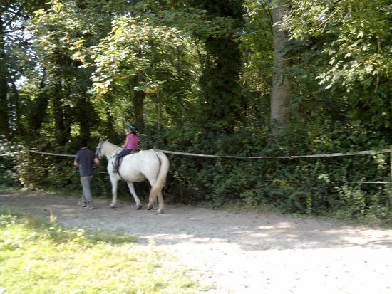 Centre Equestre du Chateau de Behen