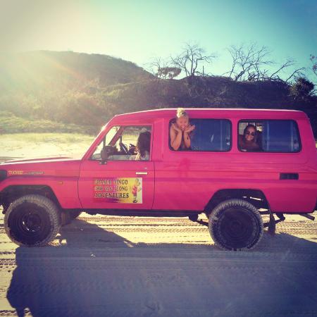 Fraser Dingo 4WD Hire
