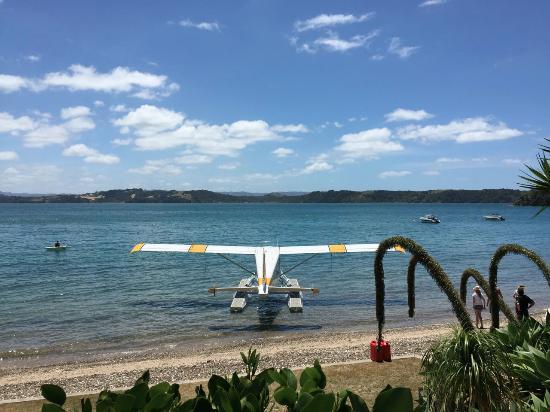 Kawau Island照片