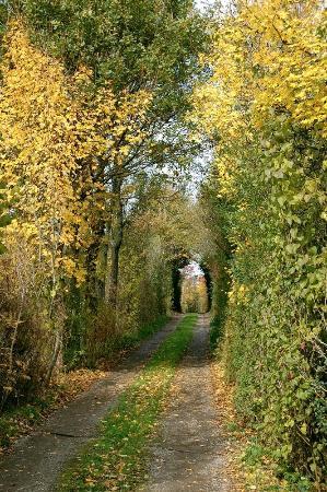 Chabanais, Francia: le chemin d'entrée