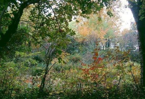 Chabanais, Francia: la petite clairière