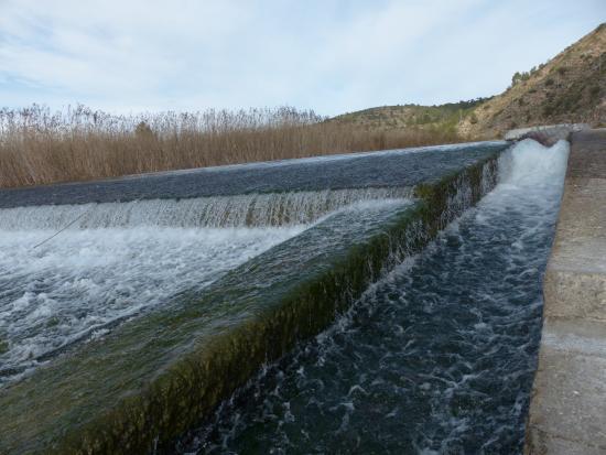 Antella, İspanya: Azus