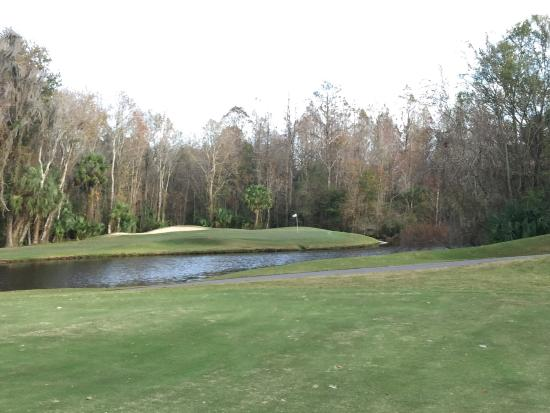 Tampa Palms Golf & Country Club: photo0.jpg