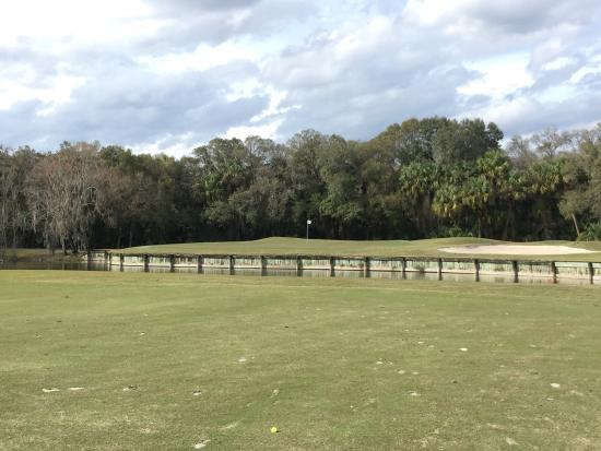 Tampa Palms Golf & Country Club: photo2.jpg